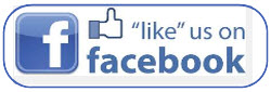 Like us on facebook blog button