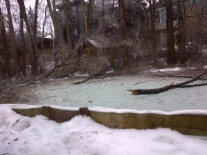 Dr. Sam's backyard ice rink